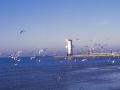 klimaty_morskie_062.