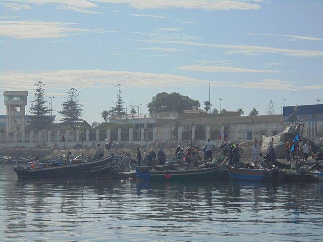 Port rybacki w Mohammedia