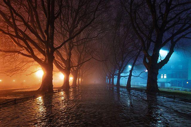 Park Kasprowicza Magia deszczu